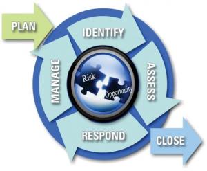 BAE risk management process